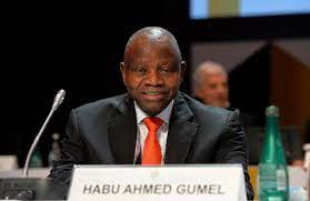 Gumel: Our Worthy Ambassadors Have Toiled To Bring Glory Home